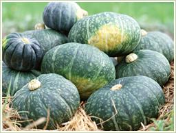 高品質の国産・かぼちゃを使用