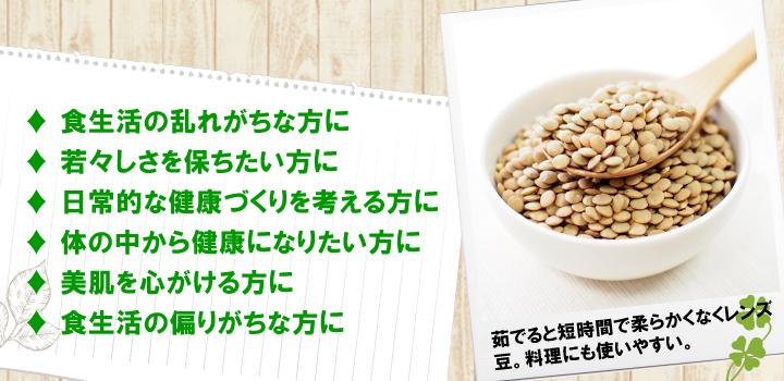 レンズ豆をおすすめします